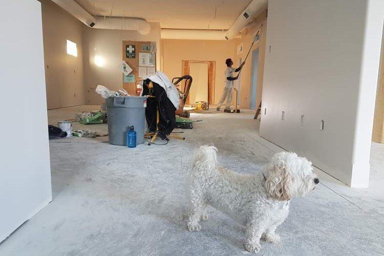 Bajan Handyman Renovations